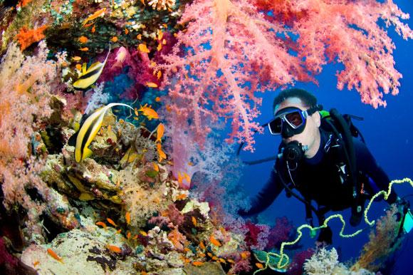 Scuba-diving-big