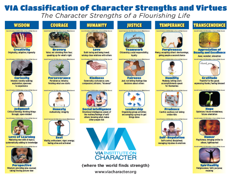 VIA Character Strength 3