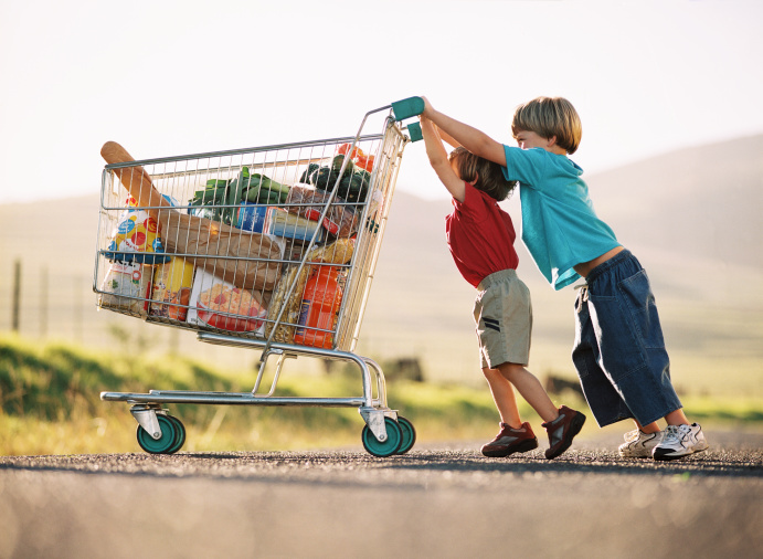 Grocery-Cart-Shopping