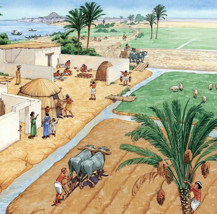 Mesopotamian irrigation