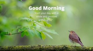 Good Morning 6